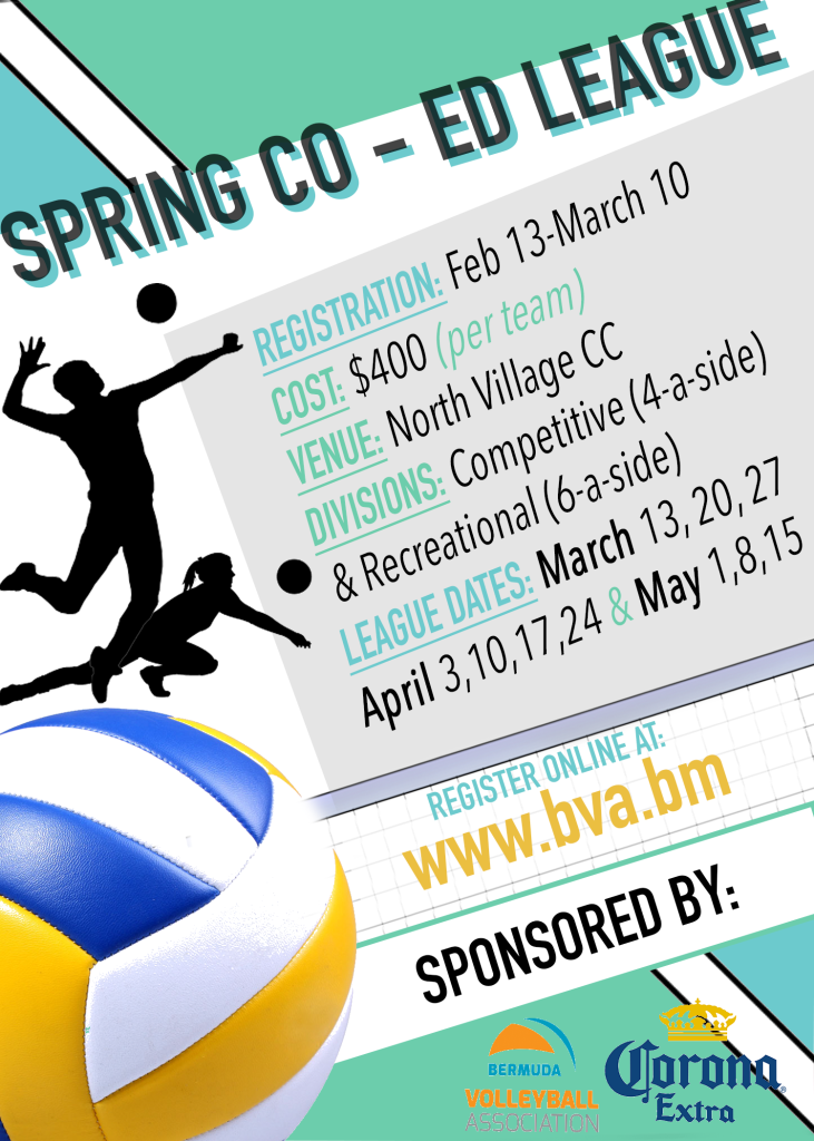 BVA Spring League Poster